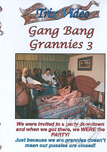 Gang Bang Grannies 3 Box Cover