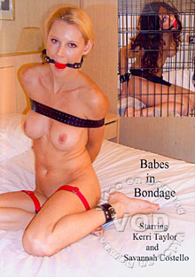 Babes In Bondage Box Cover