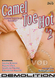 Camel Toe Hot 2 Box Cover