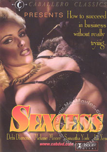 Sexcess Box Cover