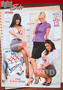 My XXX Secretary 3 Box Cover