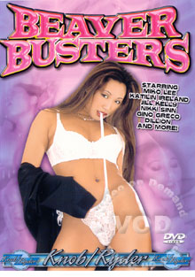 Beaver Busters Box Cover
