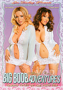 Big Boob Adventures Box Cover