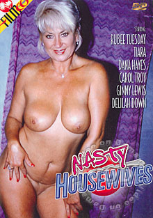 Nasty Housewives Box Cover