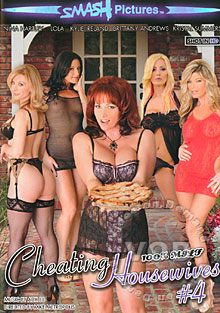 Cheating Housewives #4 Box Cover