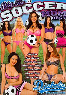 Big Tit Soccer Mom Orgy Box Cover