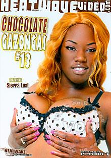 Chocolate Gazongas #13 Box Cover
