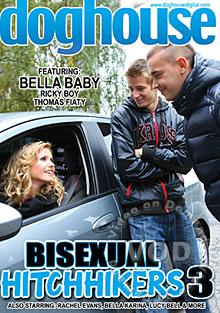 Bisexual Hitchhikers 3 Box Cover