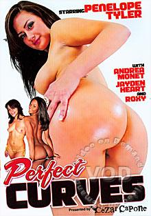 Perfect Curves Box Cover