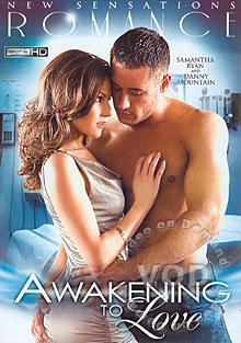 Awakening To Love Box Cover